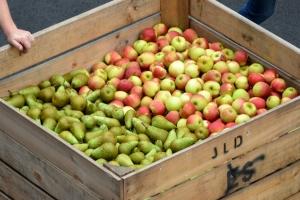 Des pommes et des poires!